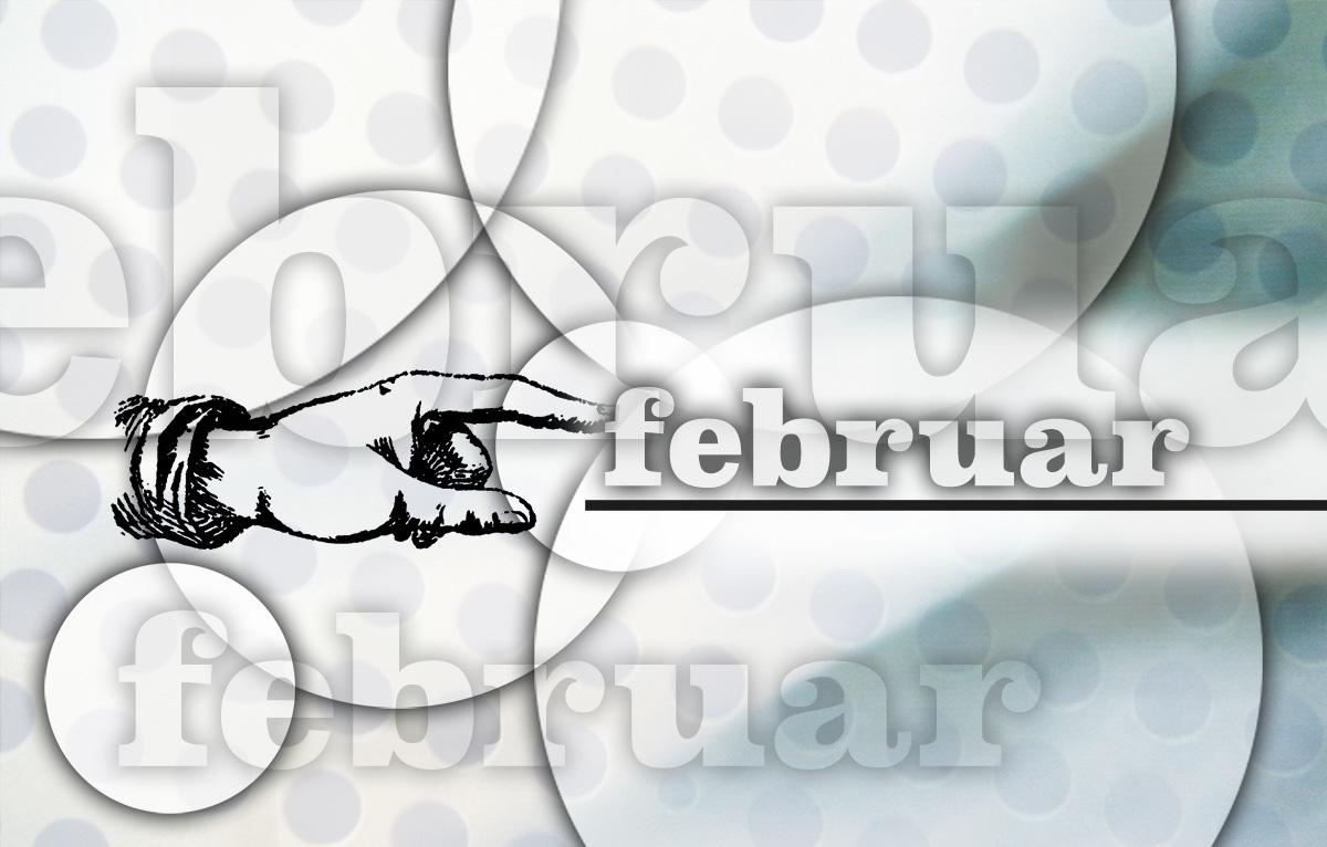 Der Februar – grafisch dargestellt